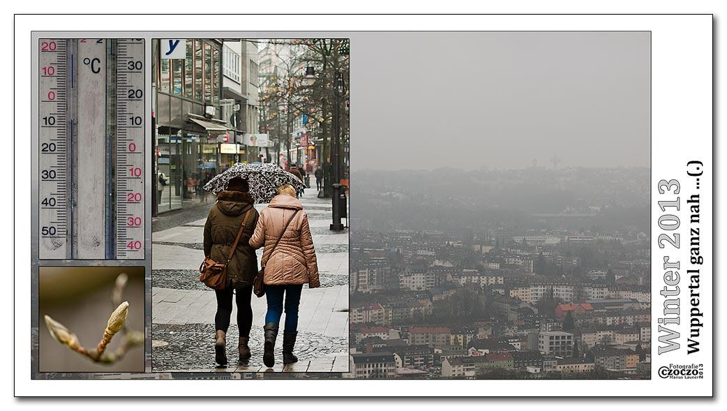 winter-2013-msgn