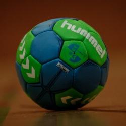 20170211-IMG_9586-Hummel