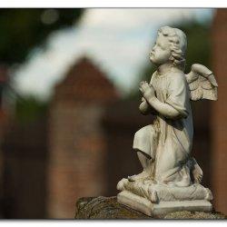 img_4230-engel