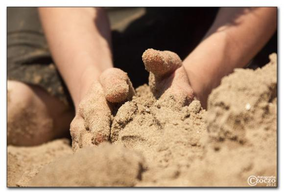 sandburg-baumeister