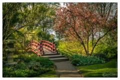 17. April 2015 - Japanische Garten - 7016