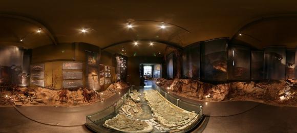 paleontologische-museum-krasiejow.jpg