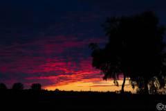 20190709-Sonnenuntergang-9A1A0936