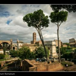 20151005-IMG_4245-Forum Romanum