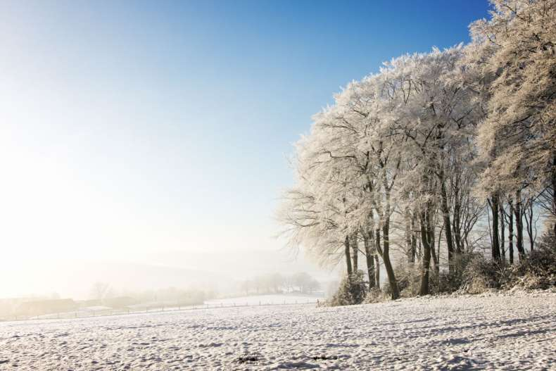 20170118-IMG_8684-Winter Erinnerung