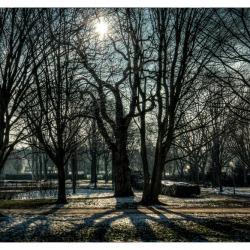20150206-wintertag