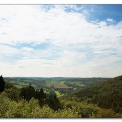 elfringhauser-schweiz-img-2530