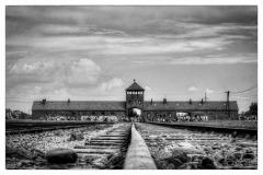 20120804-70-jahrestag-der-befreiung-von-auschwitz-4