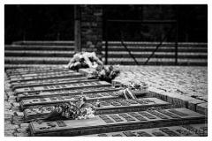 20120804-70-jahrestag-der-befreiung-von-auschwitz-5