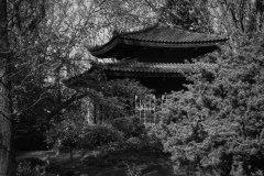 20150417-japanische-Garten-Leverkusen-IMG_7066