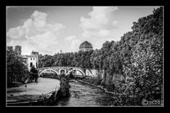 20151003-IMG_2978-Isola Tiberina