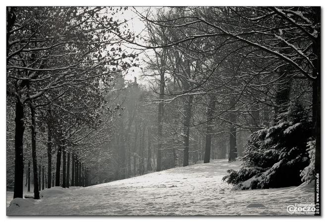 winter-einbruch