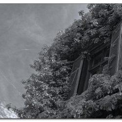 2012-botanischer-garten-hardt-wuppertal
