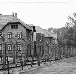 20120804-70-jahrestag-der-befreiung-von-auschwitz