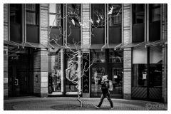 20150120-img_3826-schulweg