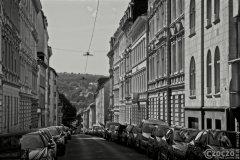 20200816-Wuppertal-9A1A8462